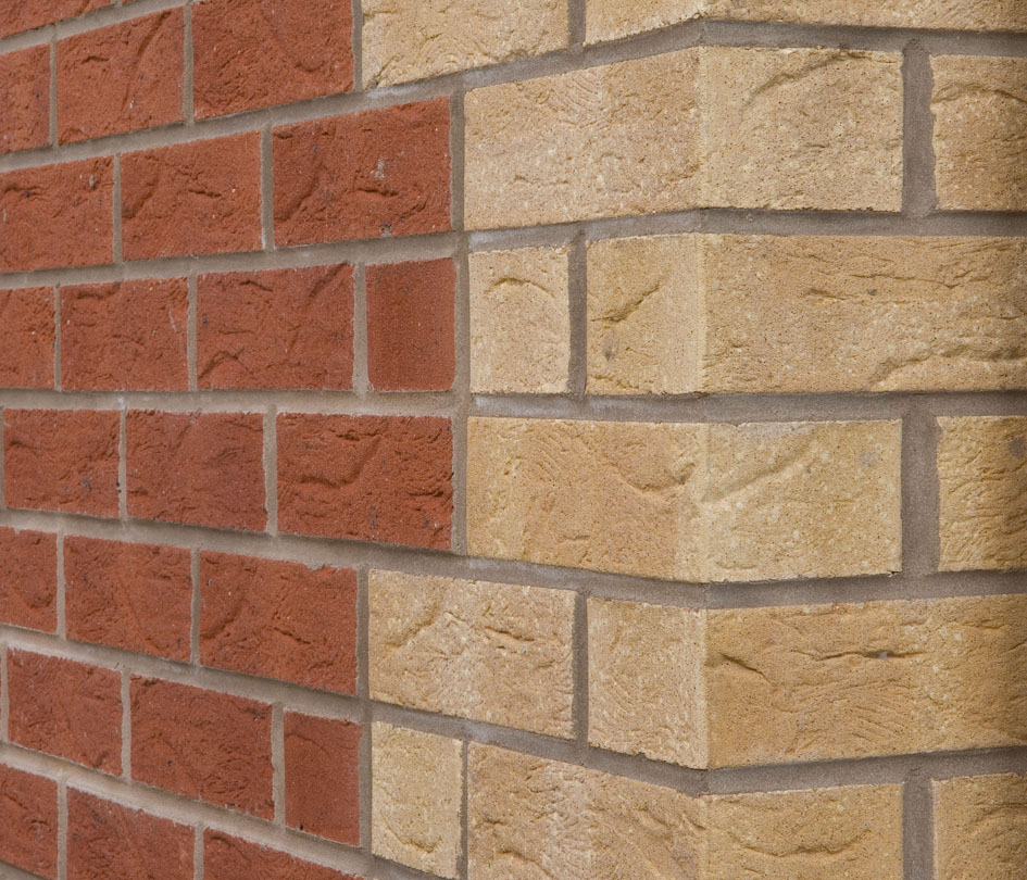 Facing bricks coloured