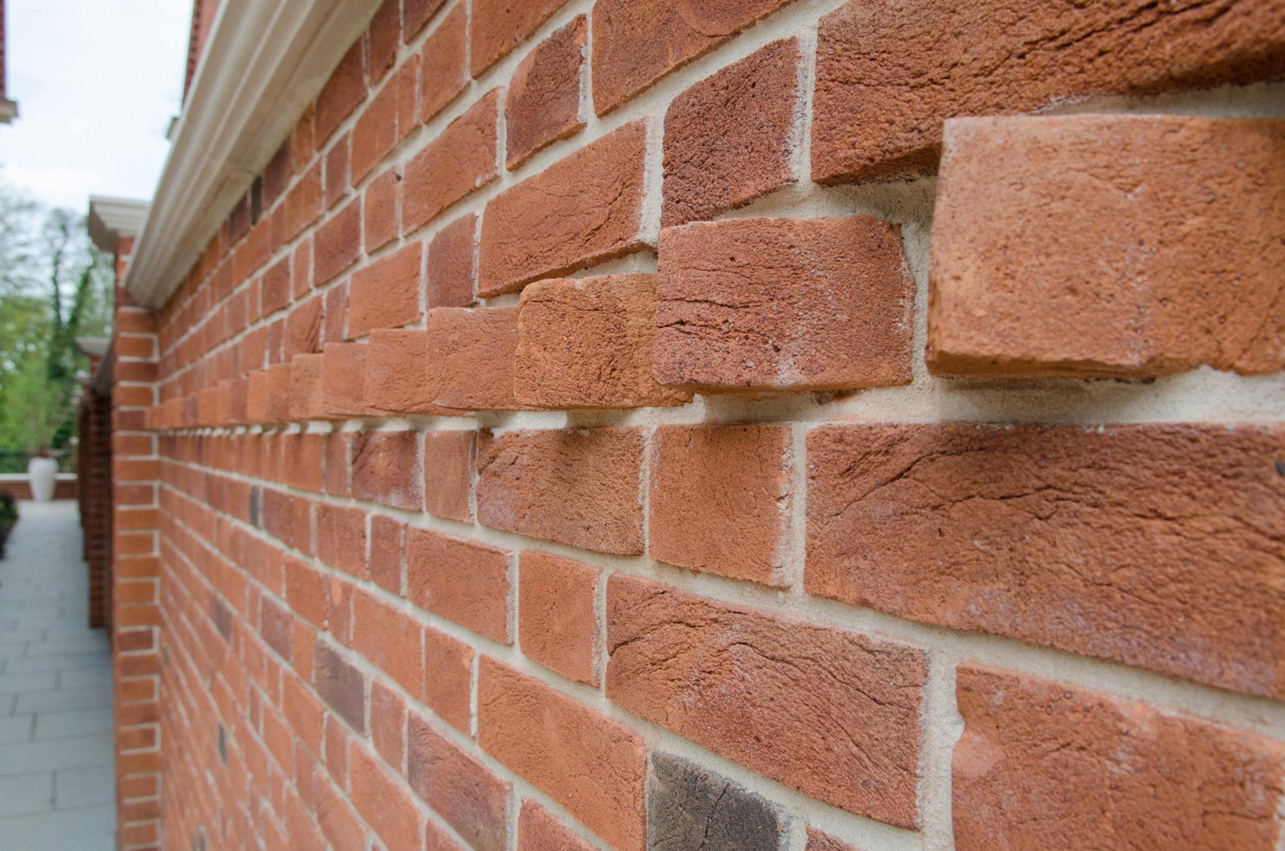 Dog tooth brick specials